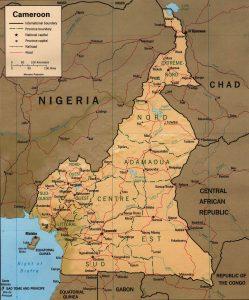 Carte en relief du Cameroun