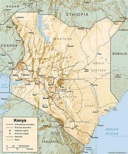 Carte en relief du Kenya