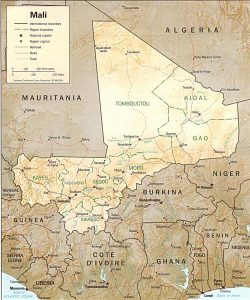 Carte en relief du Mali