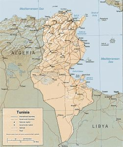 Carte en relief de la Tunisie